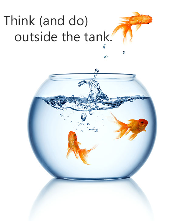 Think (and do) outside the tank with Nexus Insights